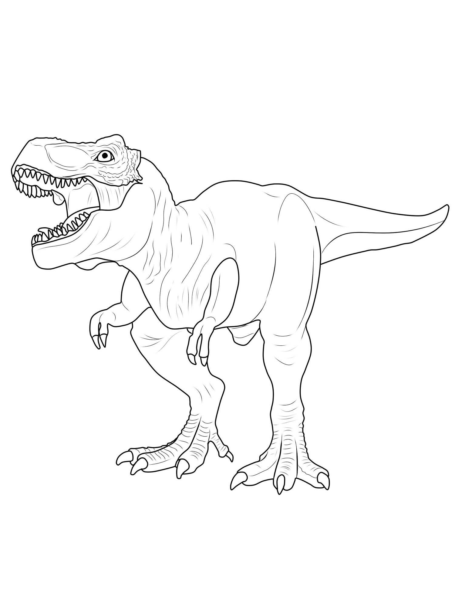 Tyrannosaurus Rex Coloring Page At Getdrawings