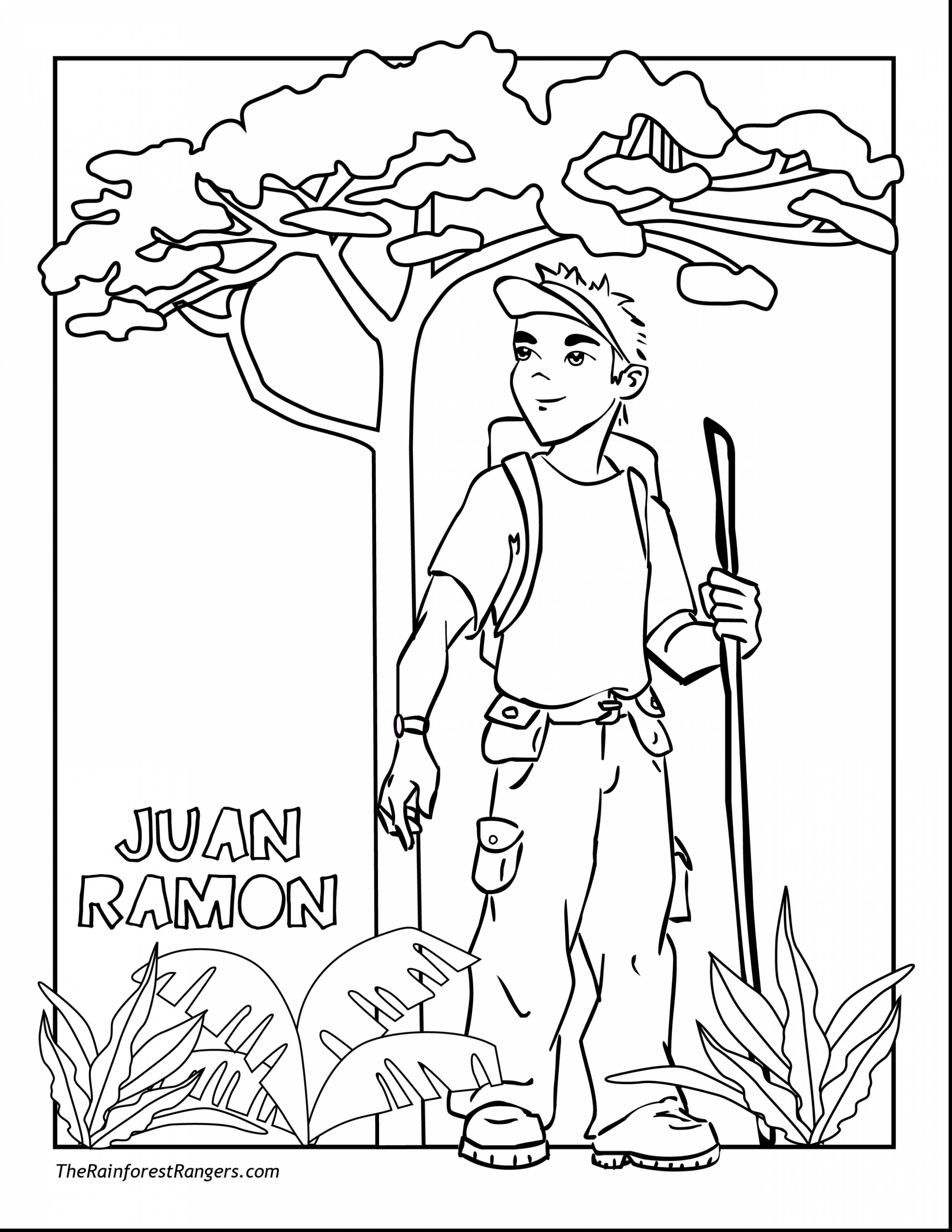 Layers Of The Rainforest Coloring Page At Getdrawings