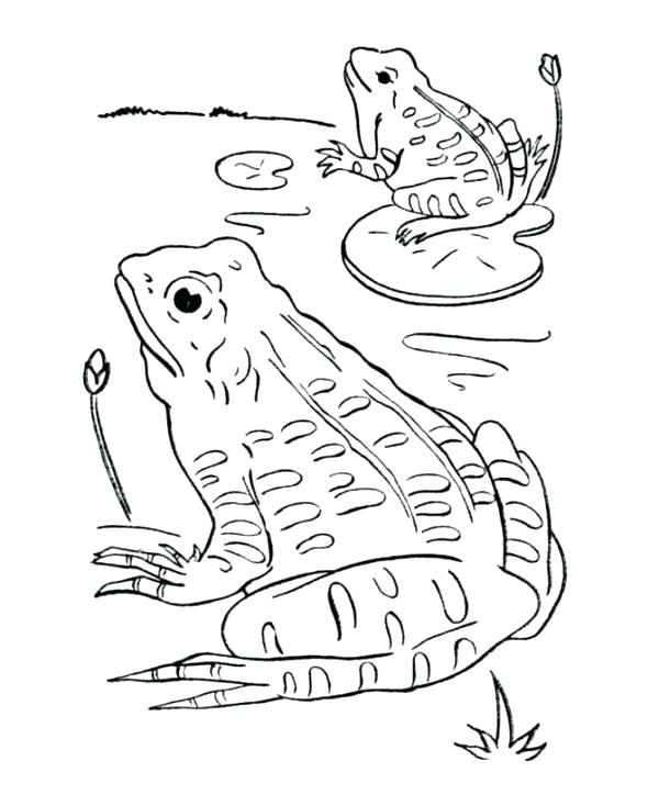 free coloring pages froggy learns to swim # 56