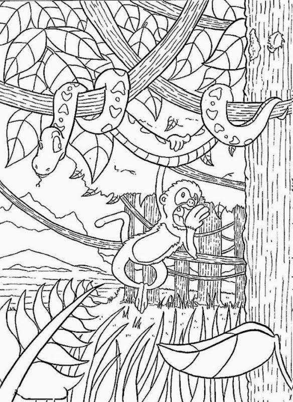 rainforest coloring page # 20