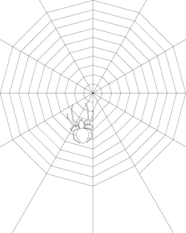 spider web coloring page # 21