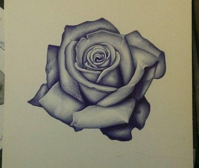X Realism Rose Sketch Art Flower Tattoo Drawing Follow