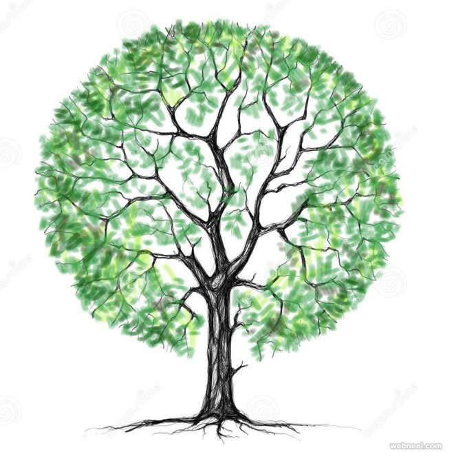 Image result for tree drawing
