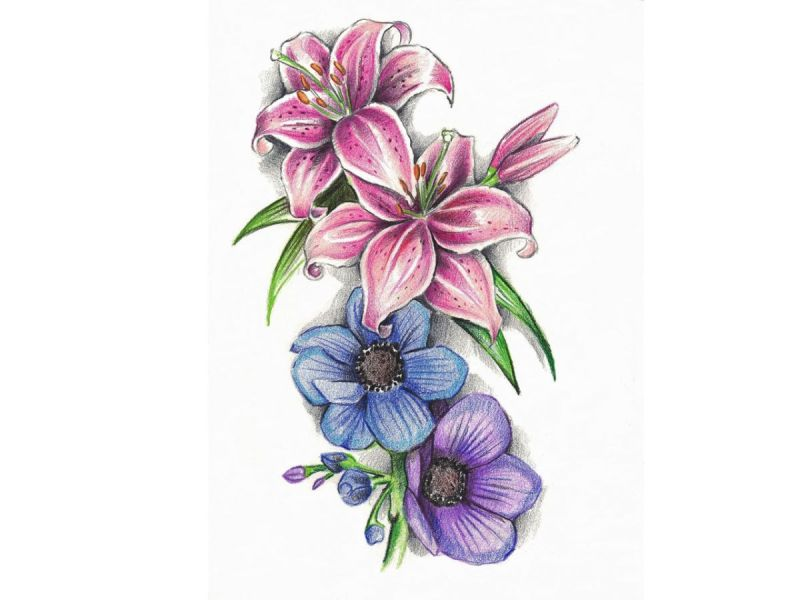 Violet Drawing at GetDrawings com   Free for personal use Violet     1200x900 Lilies and violet tattoo design