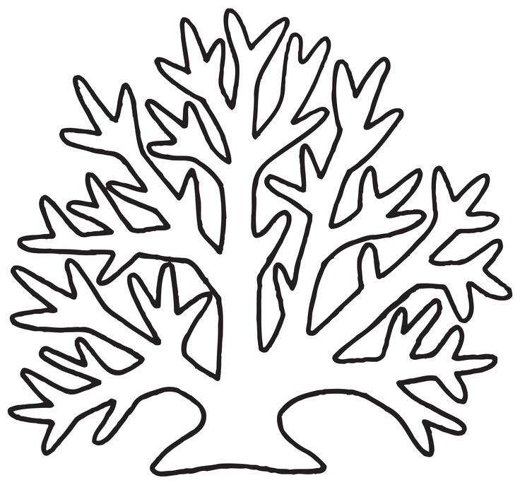 Evergreen Tree And Bear Coloring Pages