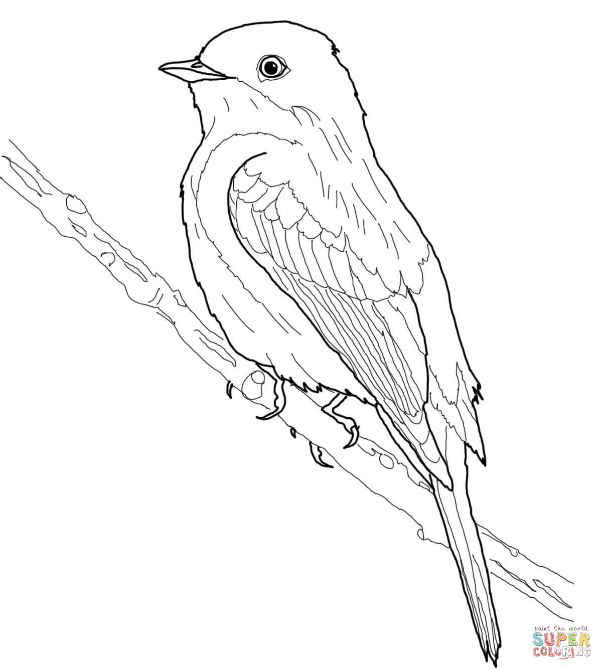 American Goldfinch Drawing At Getdrawings