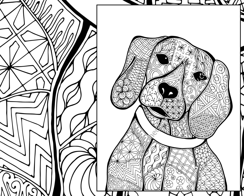 Animal Drawing At Getdrawings