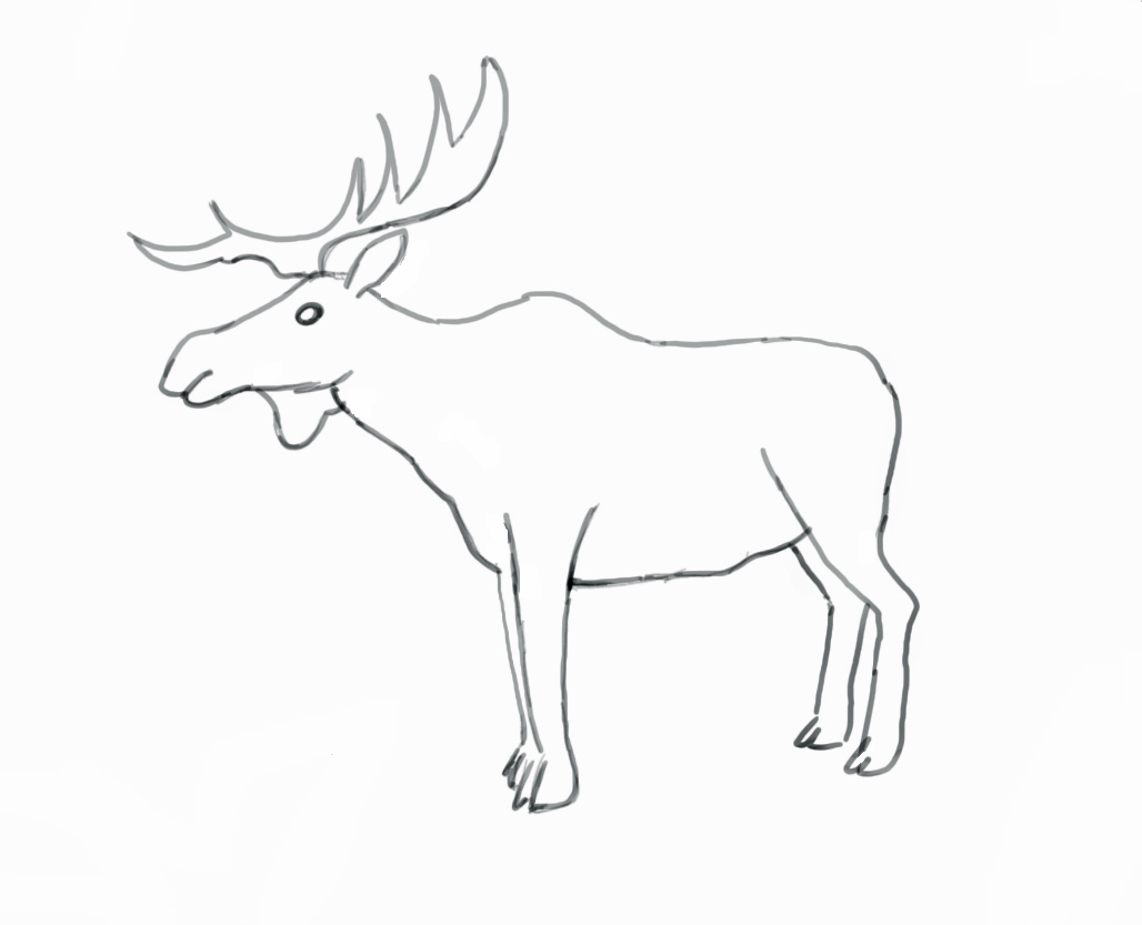 Animals Drawing Outline At Getdrawings