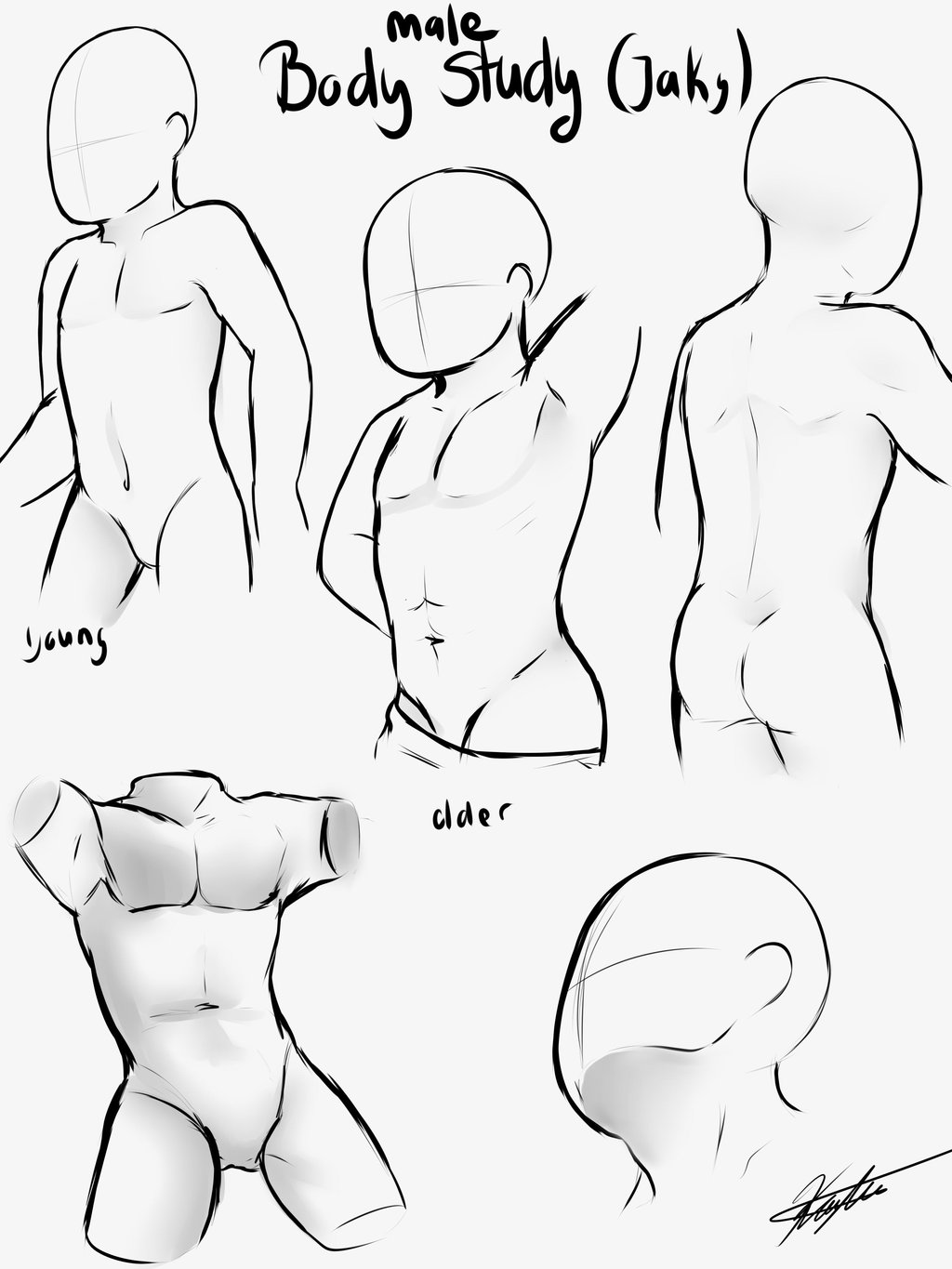Female Body Outline For Fashion Topsimages