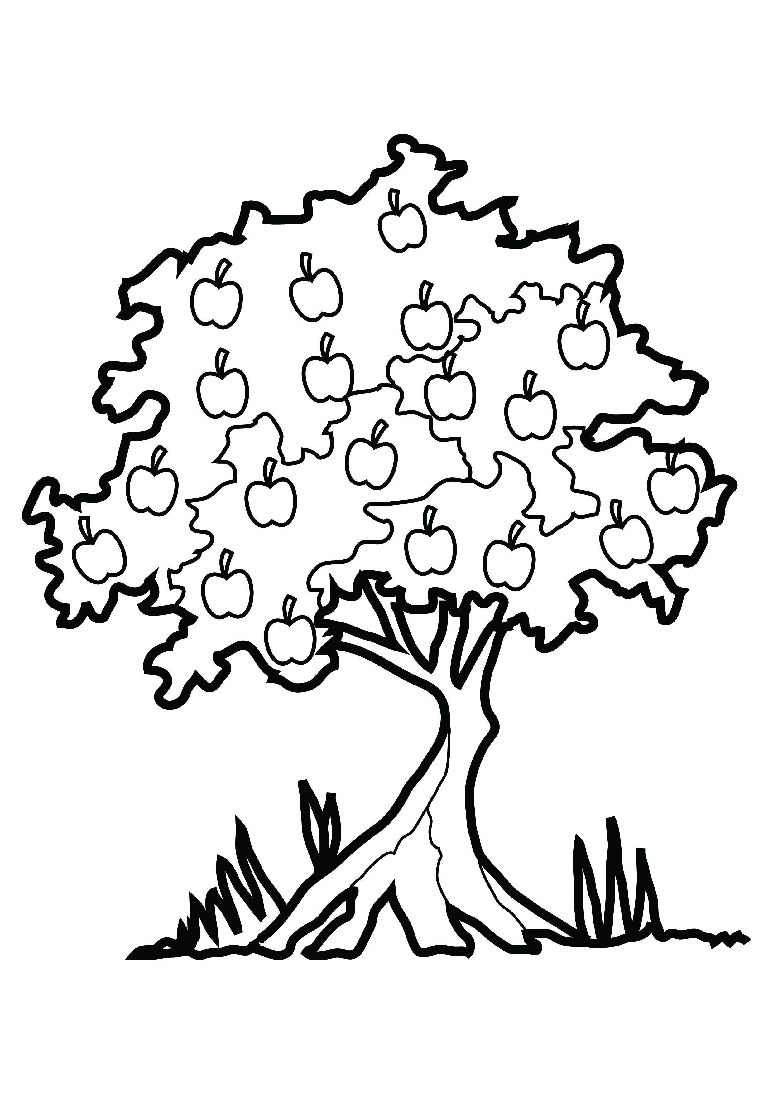 Autumn Tree Drawing At Getdrawings