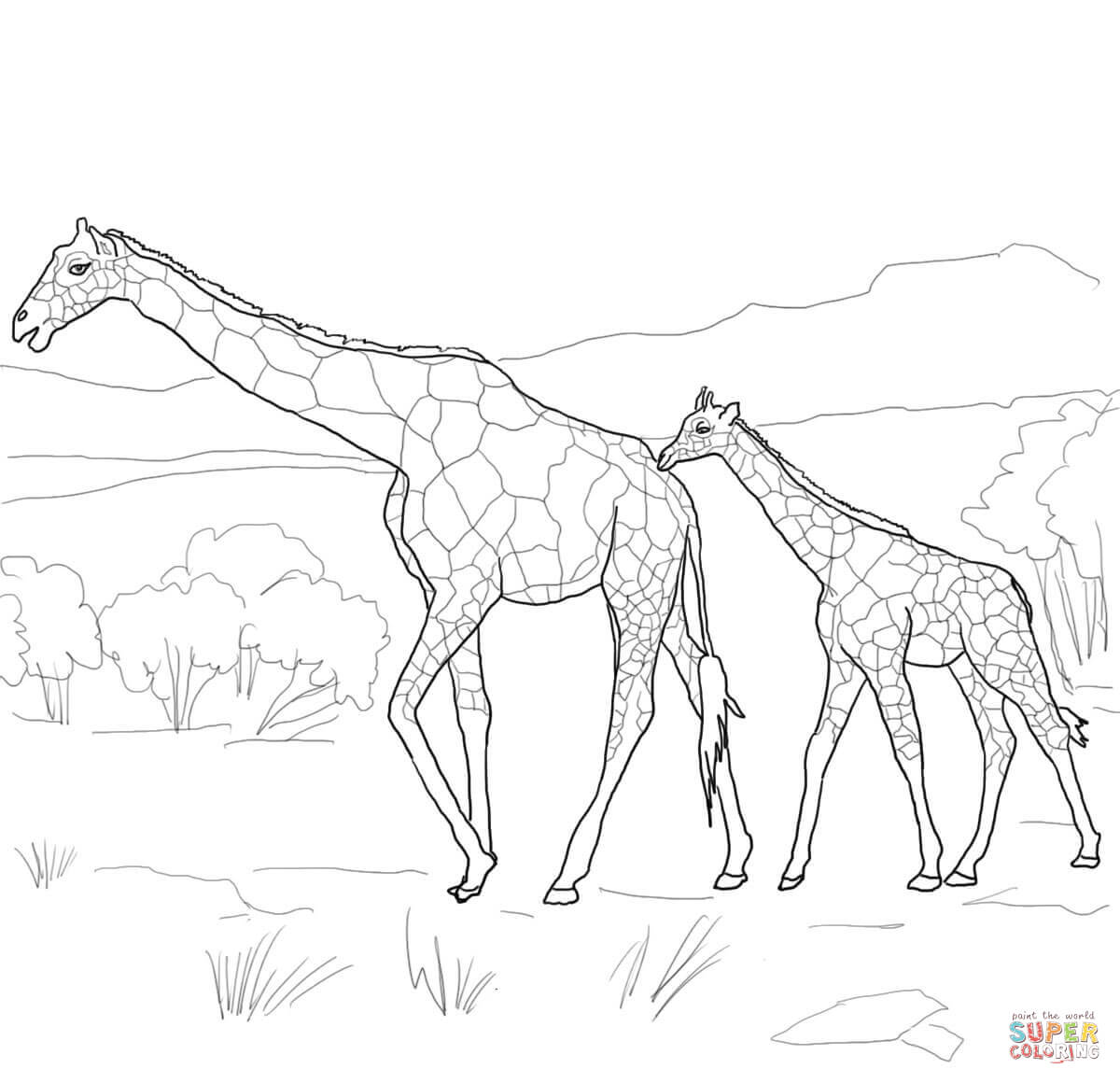 Baby Giraffe Drawing At Getdrawings