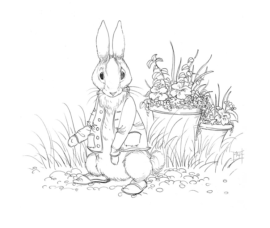 Beatrix Potter Drawing At Free For
