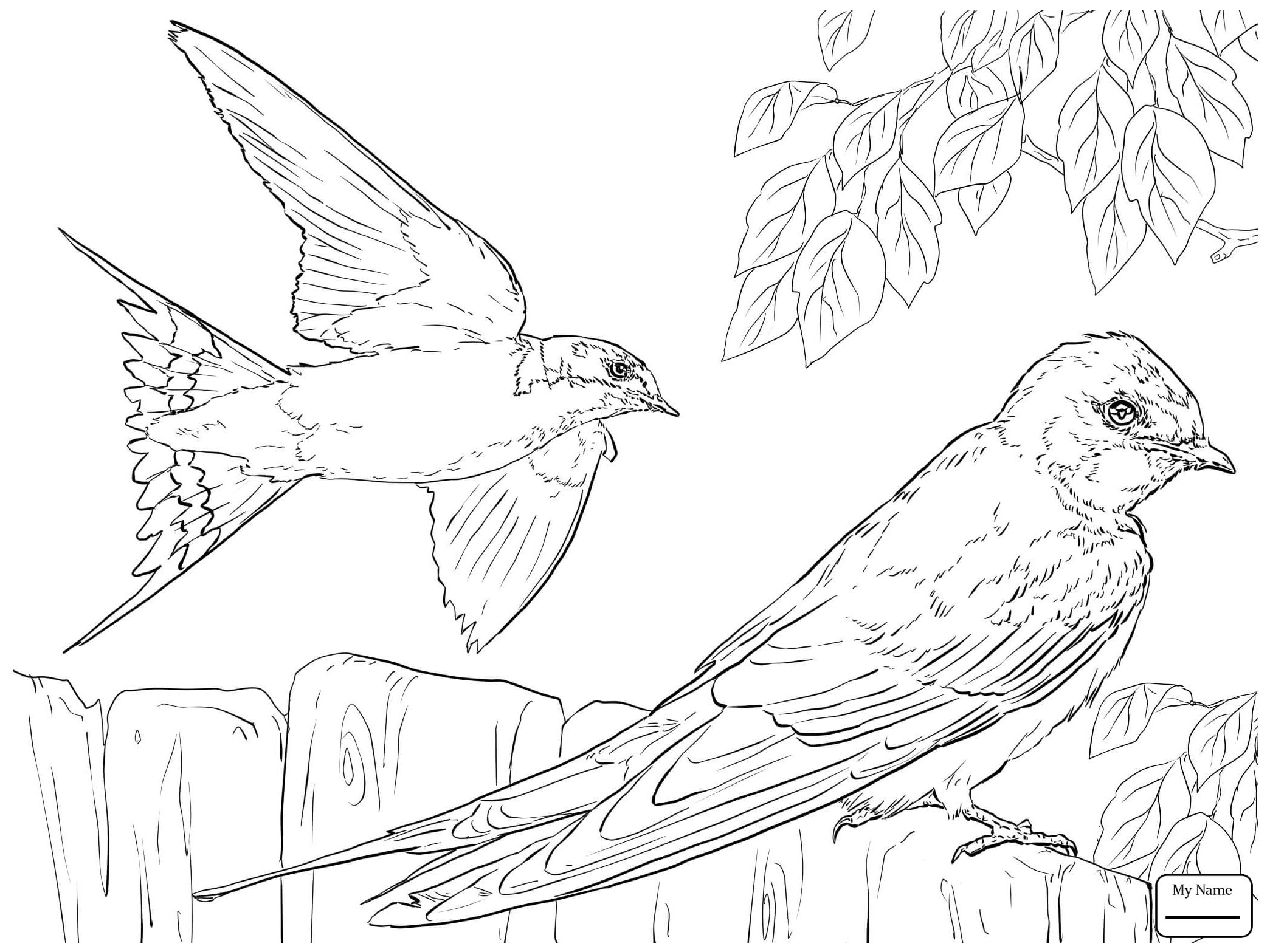Drawn Crow Flight Silhouette