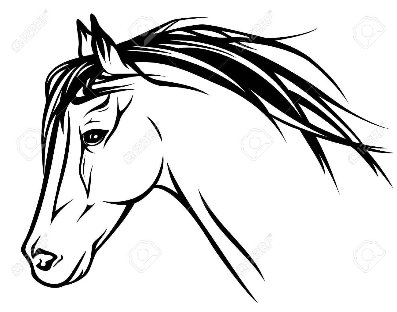 Black And White Horse Drawing At Getdrawings