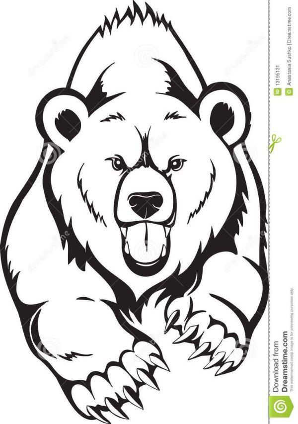 black bear coloring page # 46