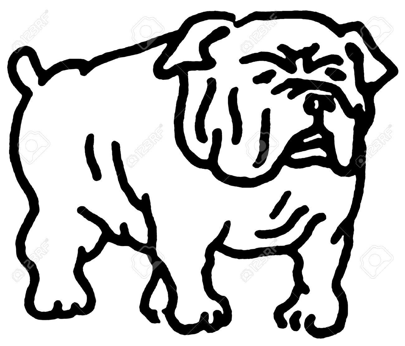 Bulldogs Drawing At Getdrawings