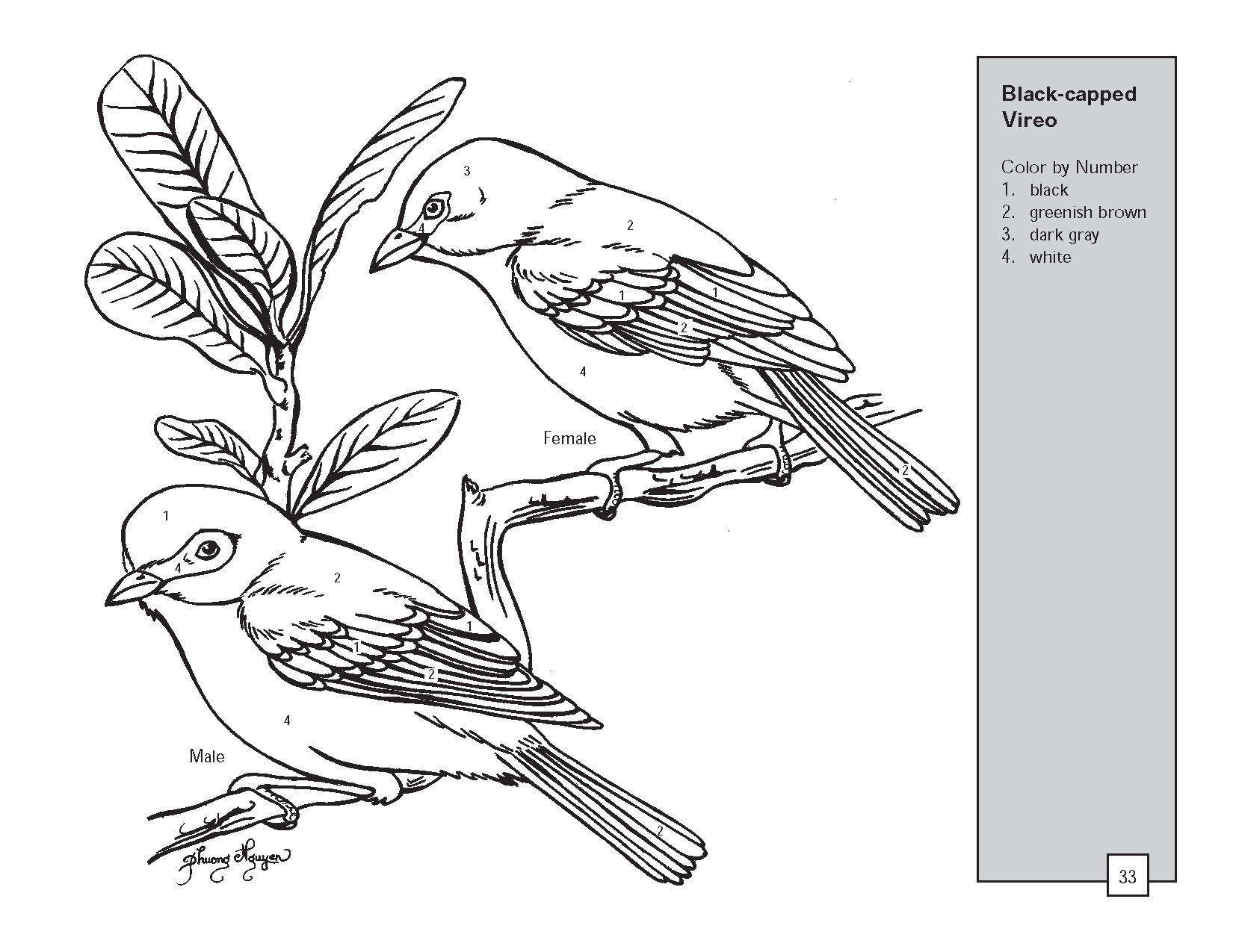 By Numbers Printables Drawing At Getdrawings