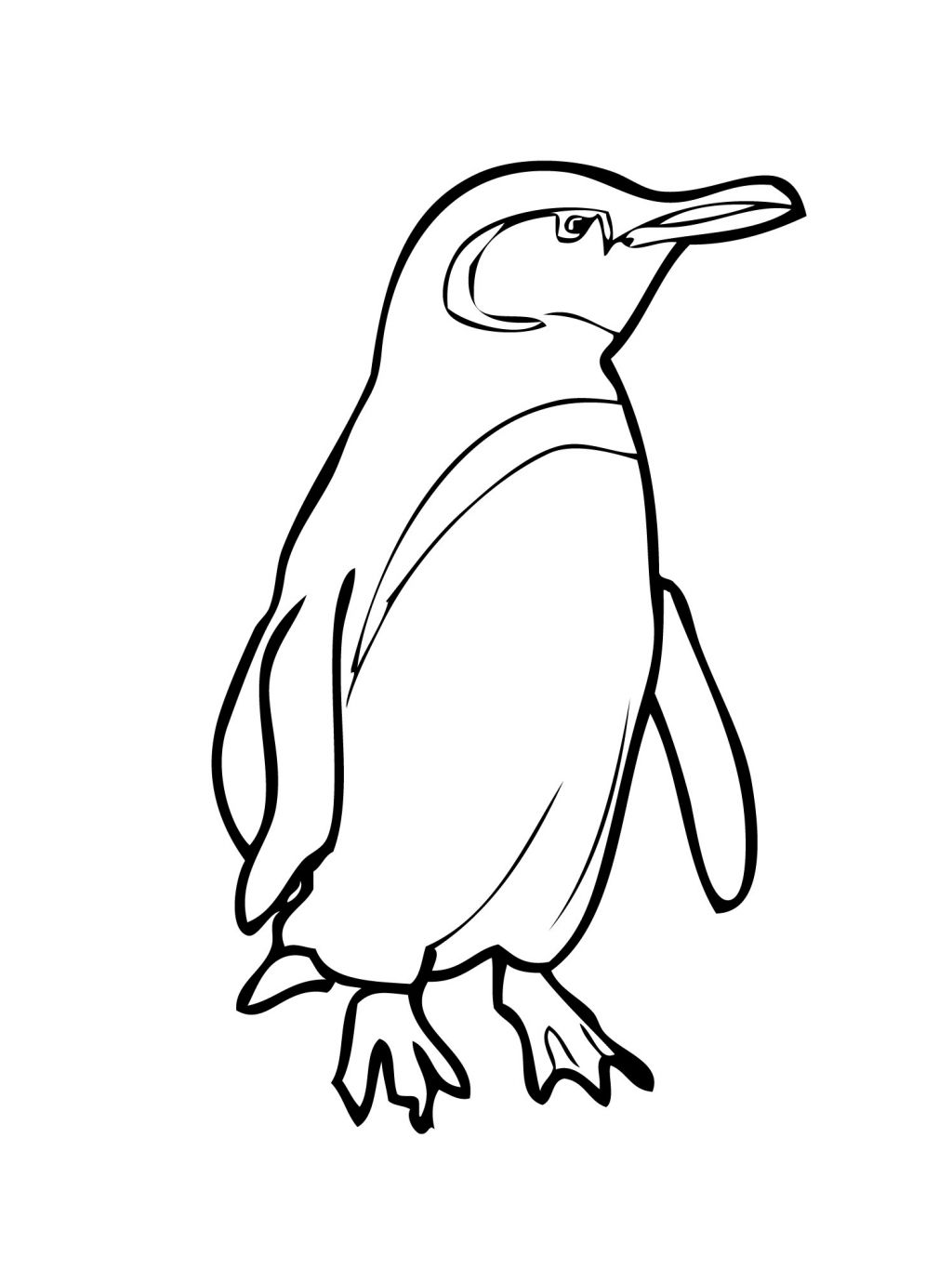 Cartoon Drawing Of Penguin At Getdrawings