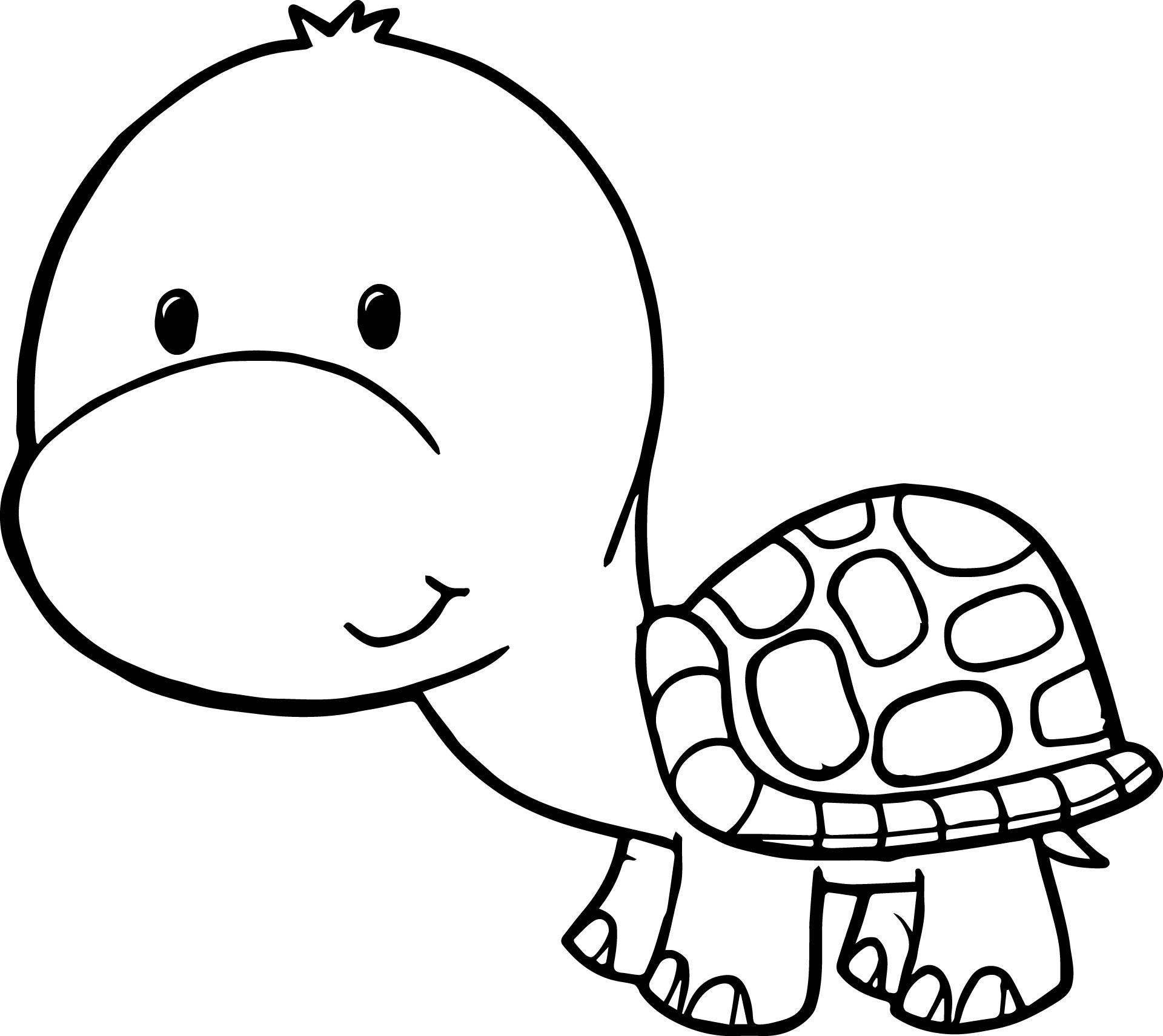 Cartoon Turtle Drawing At Getdrawings