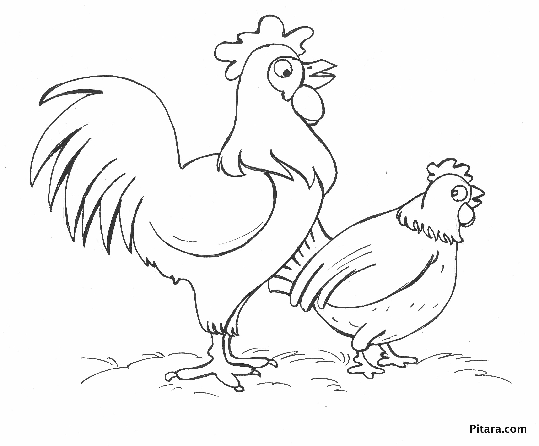 Chicken Drawing For Kids At Getdrawings