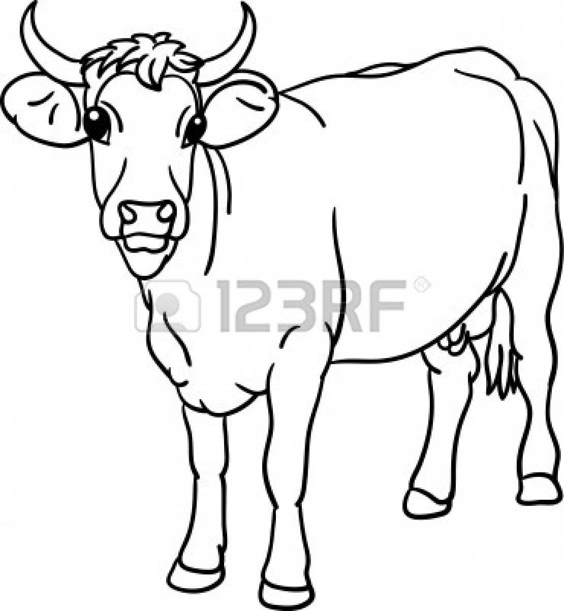 Cow Calf Drawing At Getdrawings