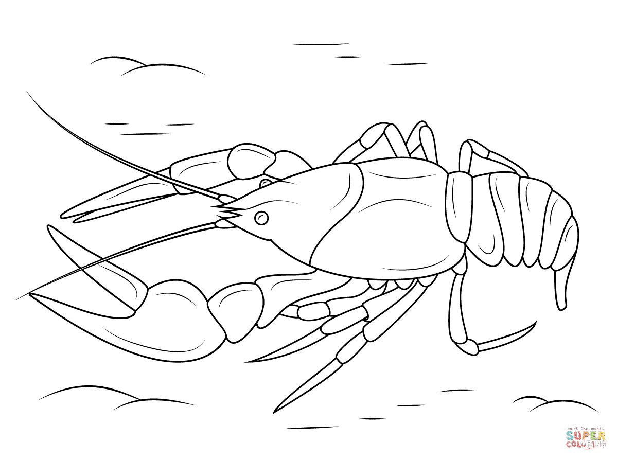 Crawfish Drawing At Getdrawings