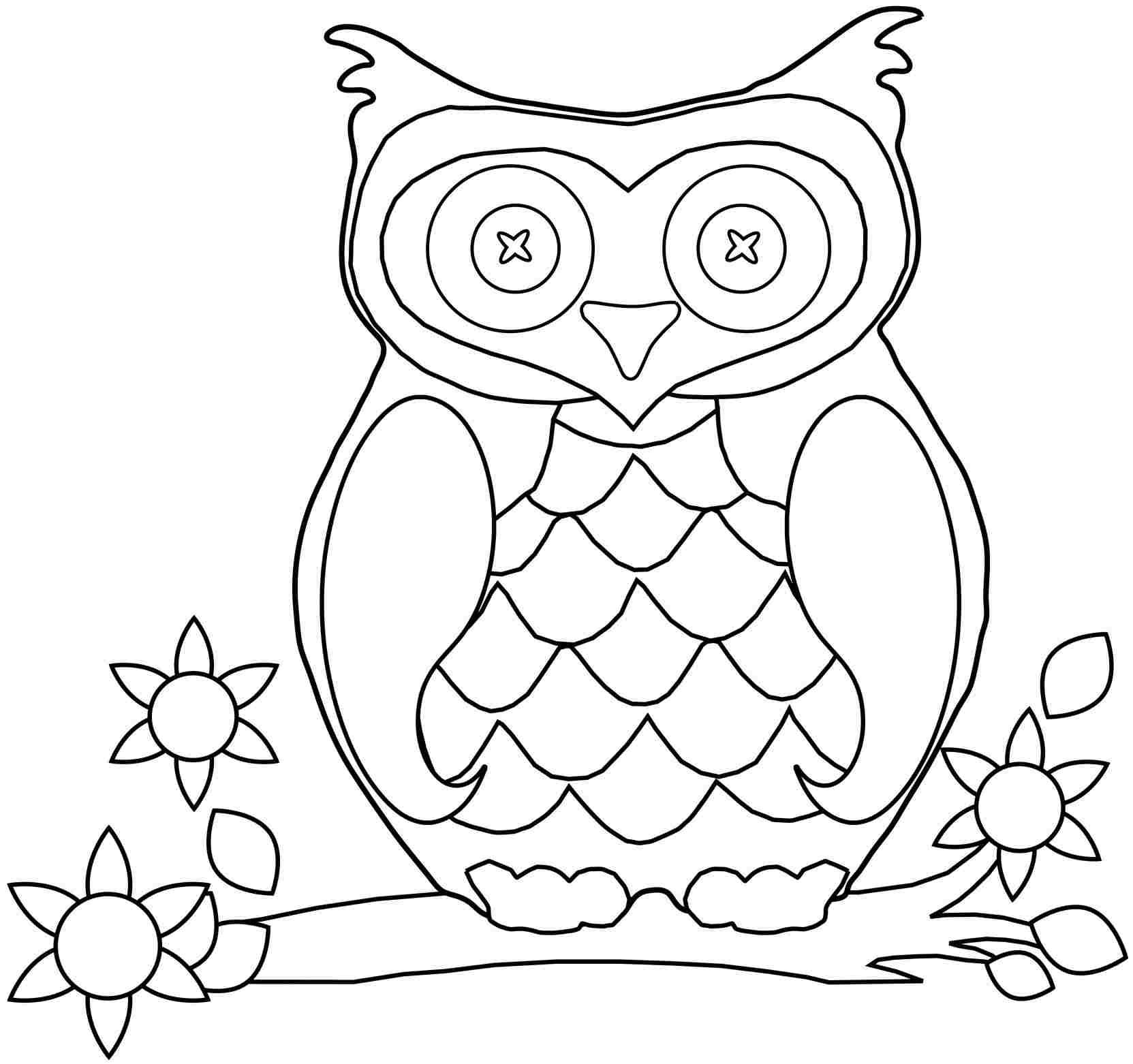 Cute Baby Owl Drawing At Getdrawings