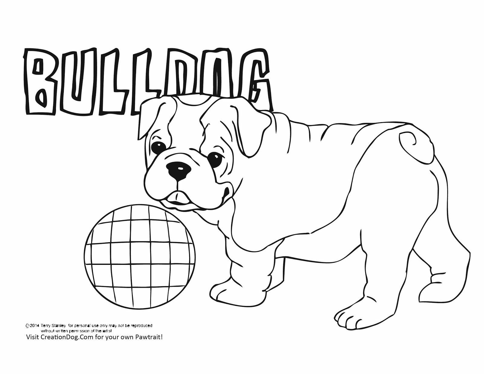Cute Bulldog Drawing At Getdrawings