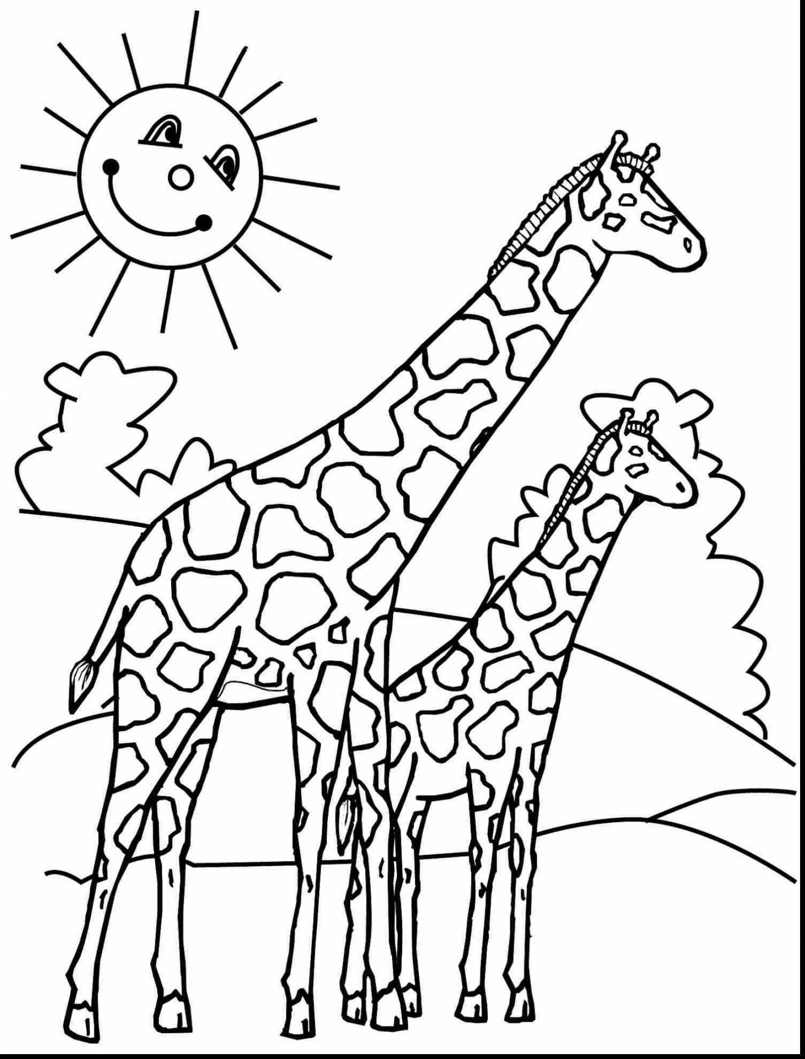 Cute Giraffe Drawing At Getdrawings