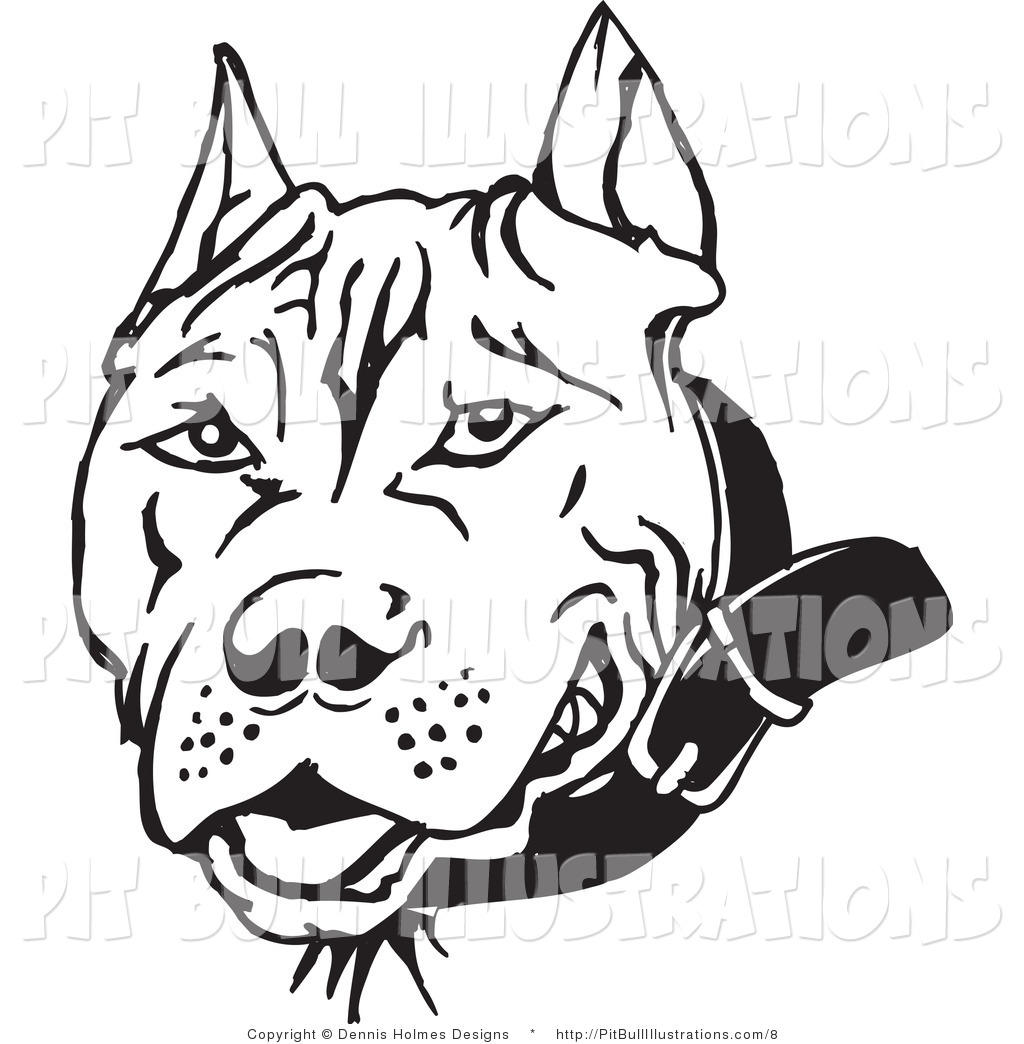 Dog Face Line Drawing At Getdrawings