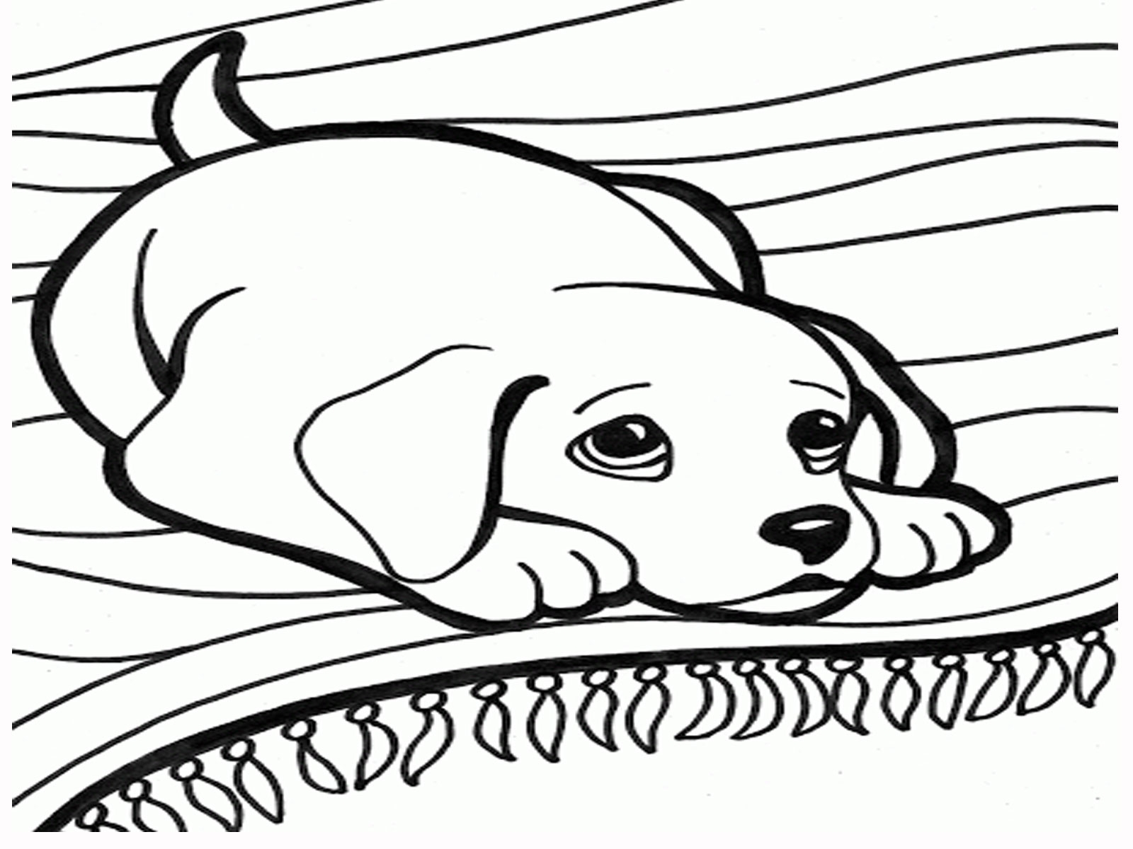 Dog Sled Drawing At Getdrawings