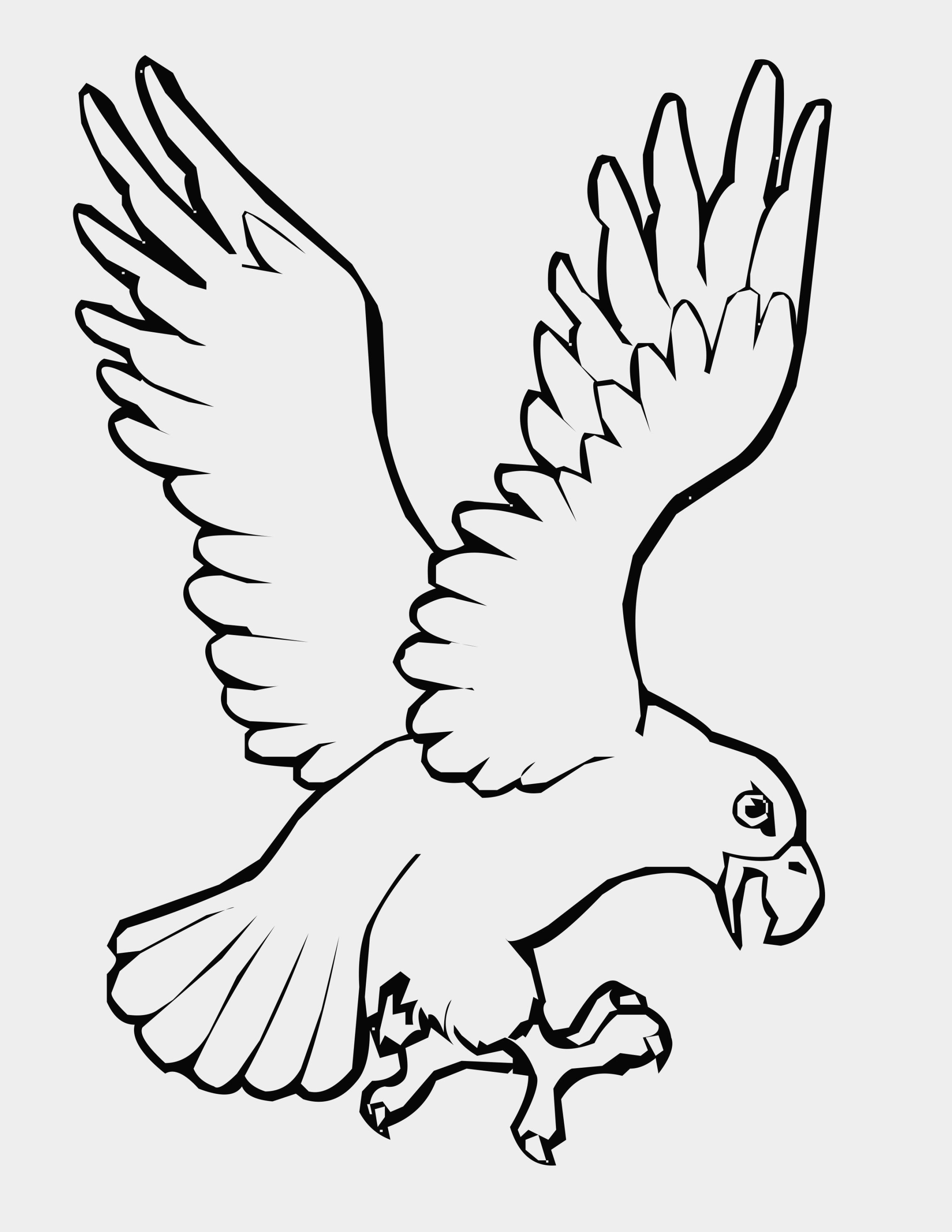 Dove Wings Drawing At Getdrawings