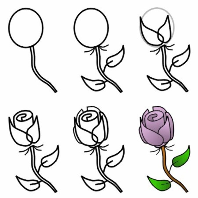 How To Draw A Rose Step By Easy For Beginners Astar Tutorial