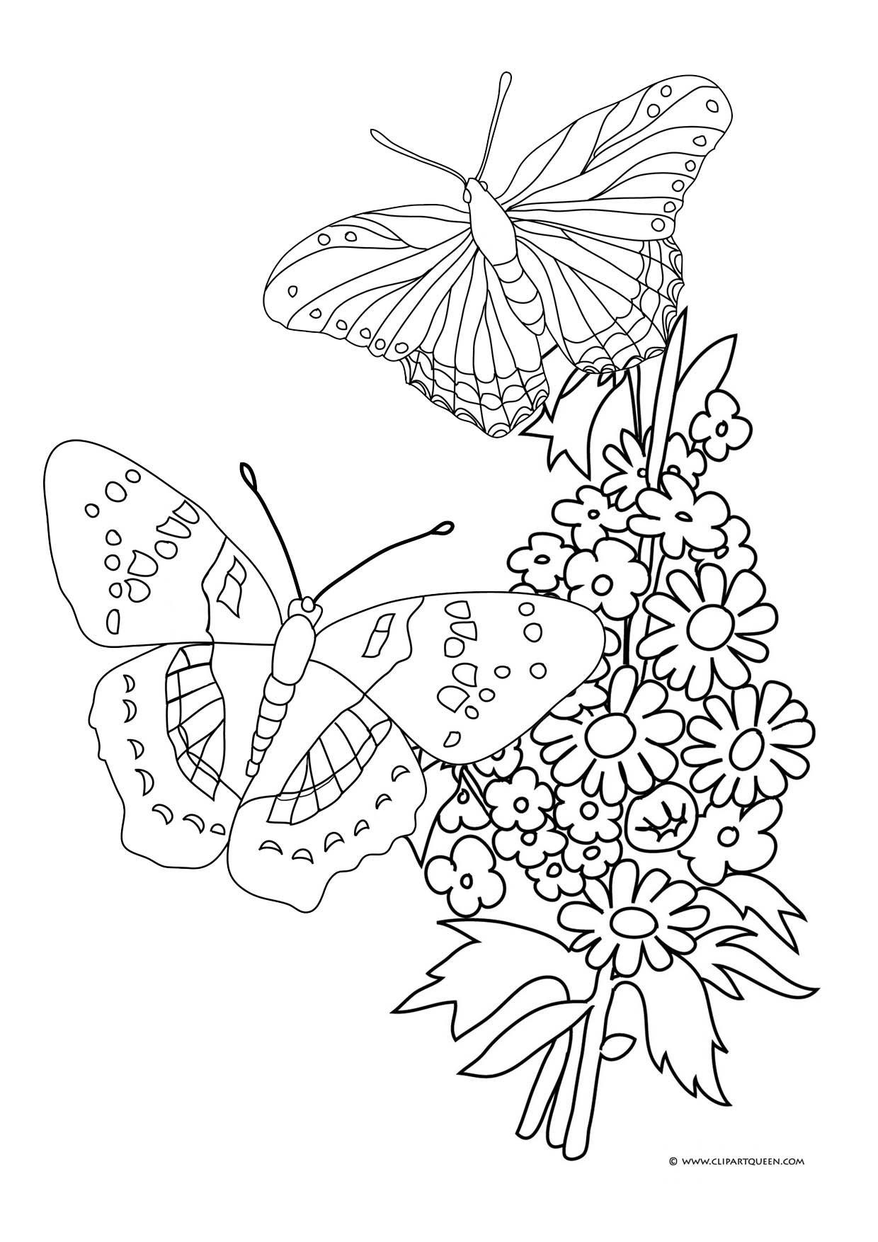 Flowers And Butterflies Drawing At Getdrawings