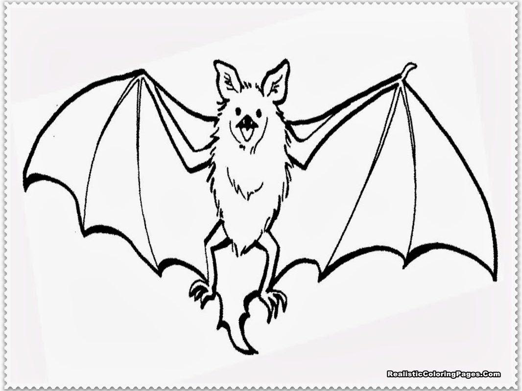 Flying Bat Drawing At Getdrawings