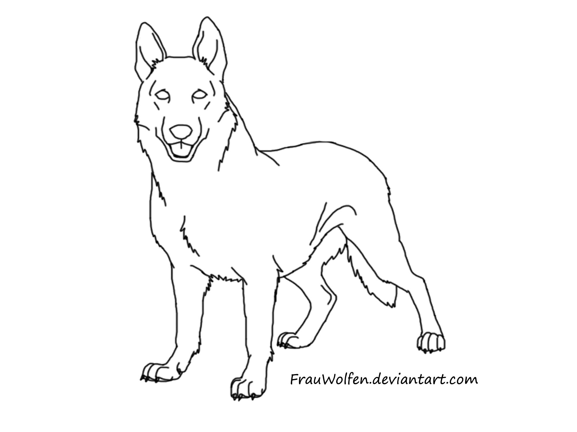 German Shepherd Face Drawing At Getdrawings