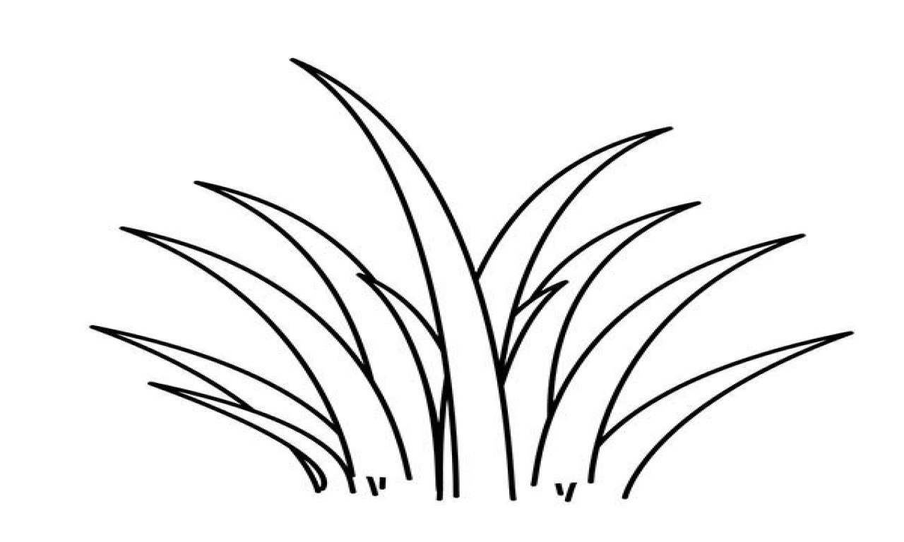Grass Line Drawing At Getdrawings