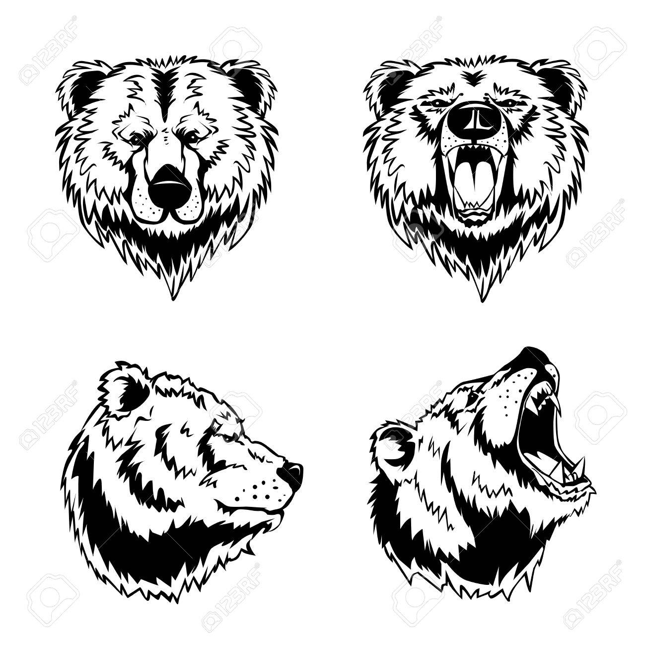 A Grizly Bear Mad
