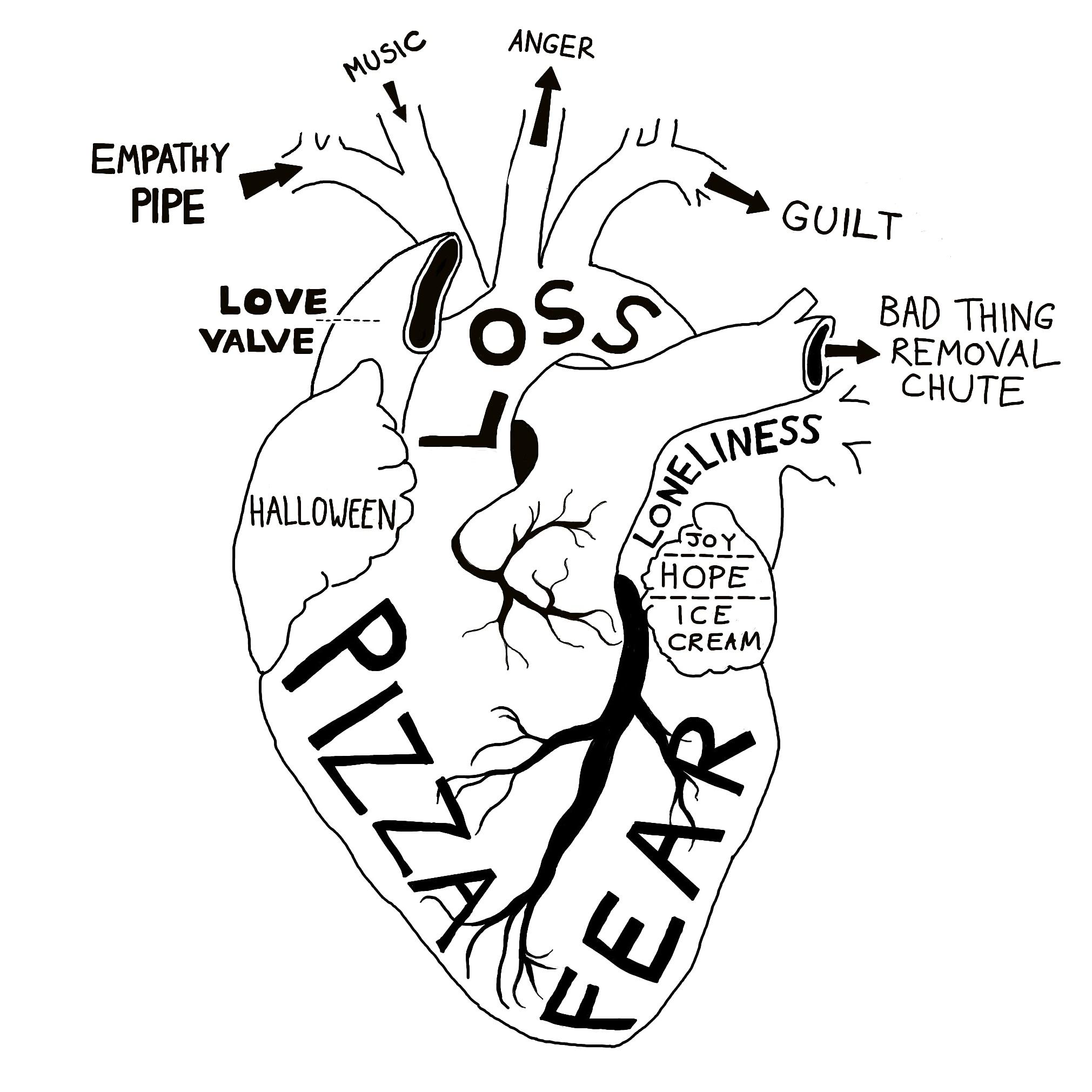 Heart Anatomical Drawing At Getdrawings