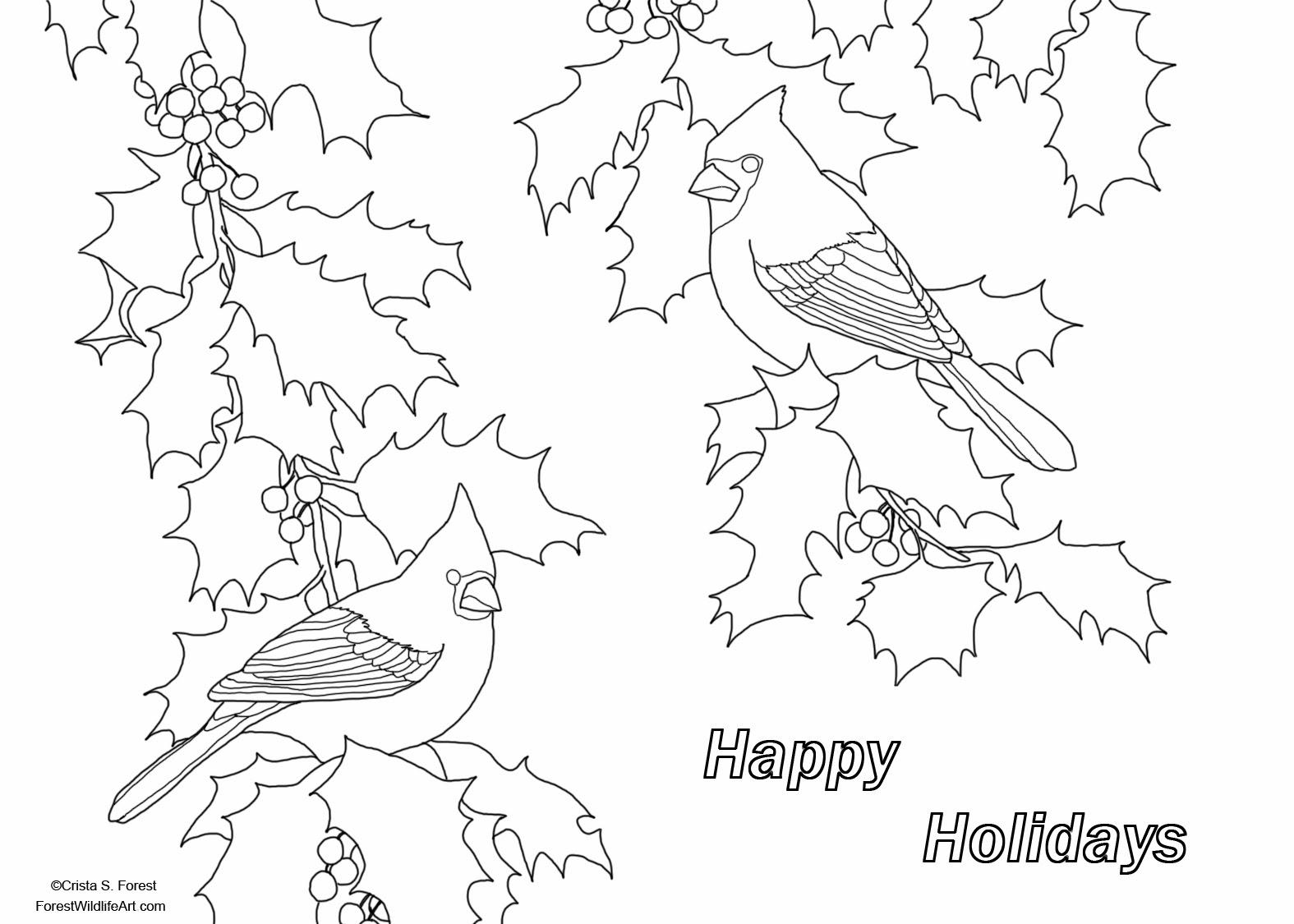 Holiday Drawing At Getdrawings