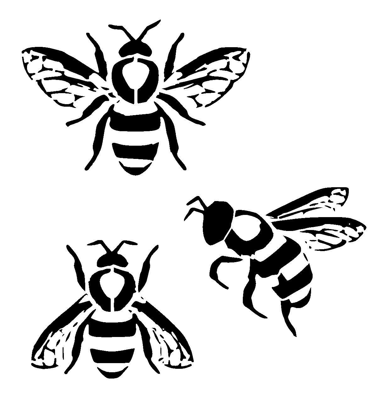 Honey Bee Line Drawing At Getdrawings