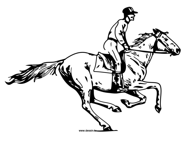 Horse And Rider Drawing at GetDrawings com   Free for personal use     1024x768 Coloring galloping horse