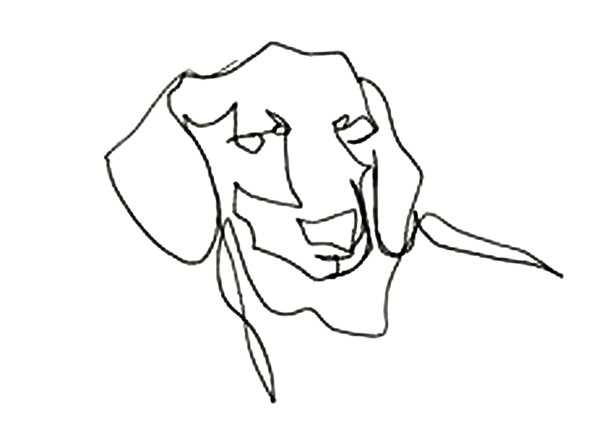 Line Drawing Dog At Getdrawings