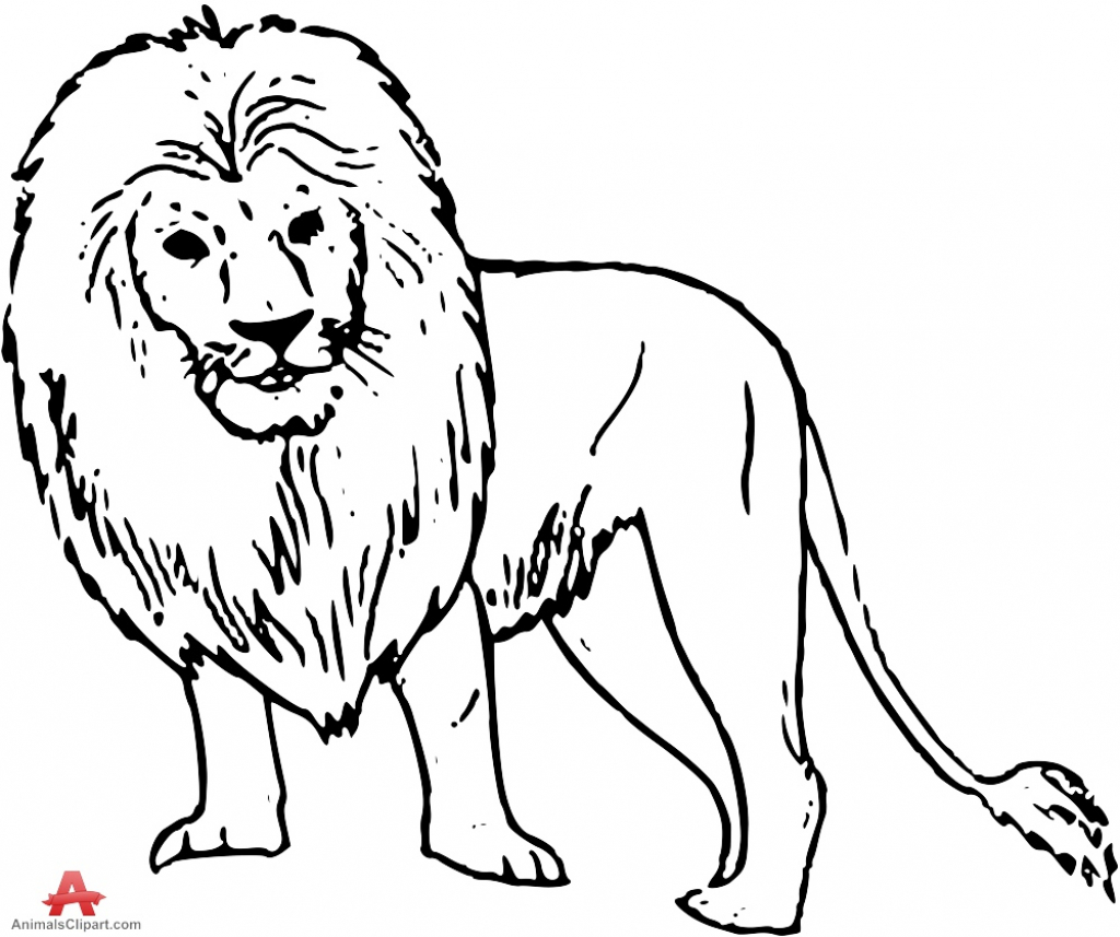 Line Drawing Of Lion At Getdrawings
