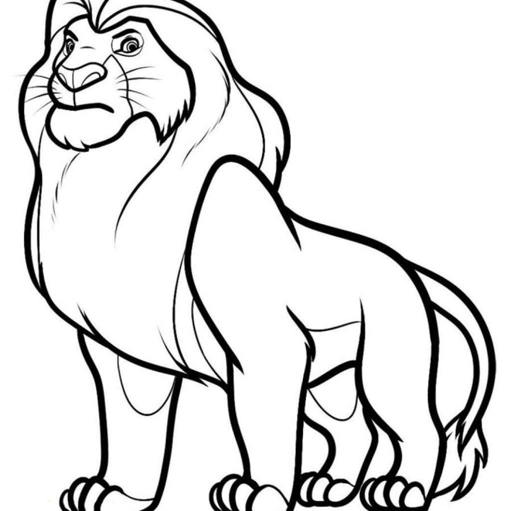 Lion Drawing Color At Getdrawings