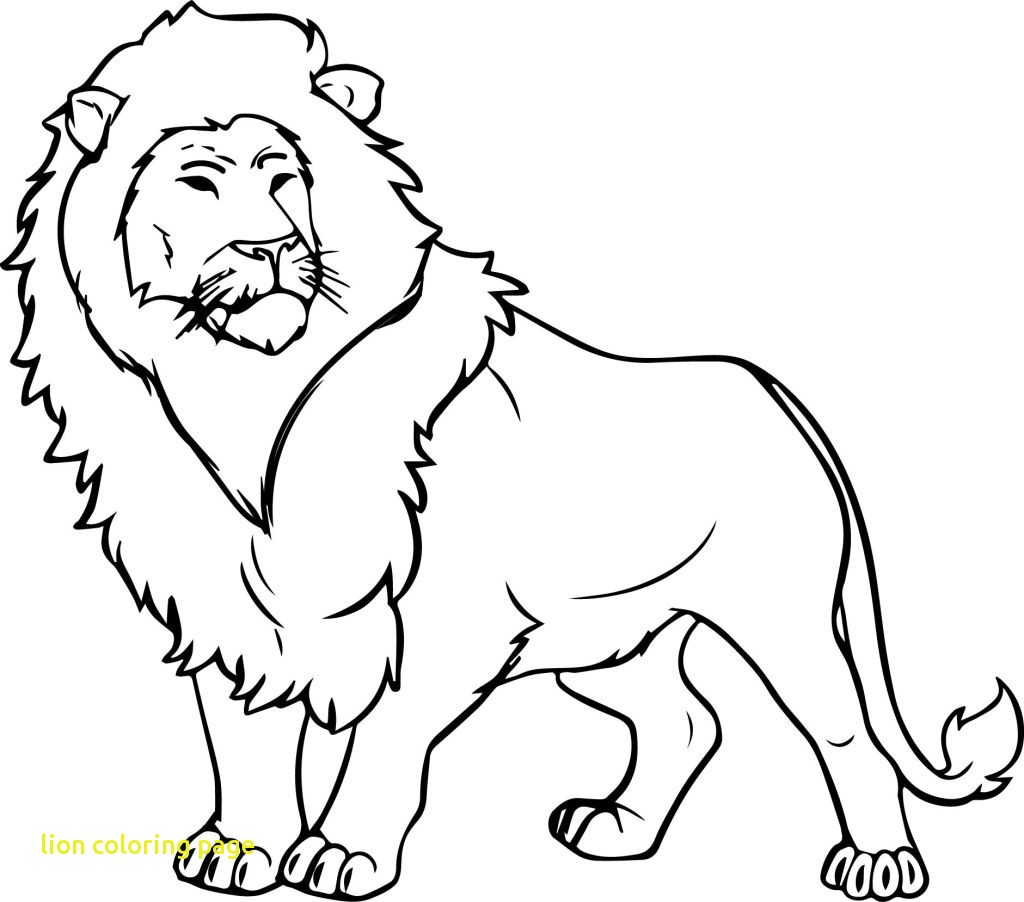 Lion Drawing For Kids At Getdrawings