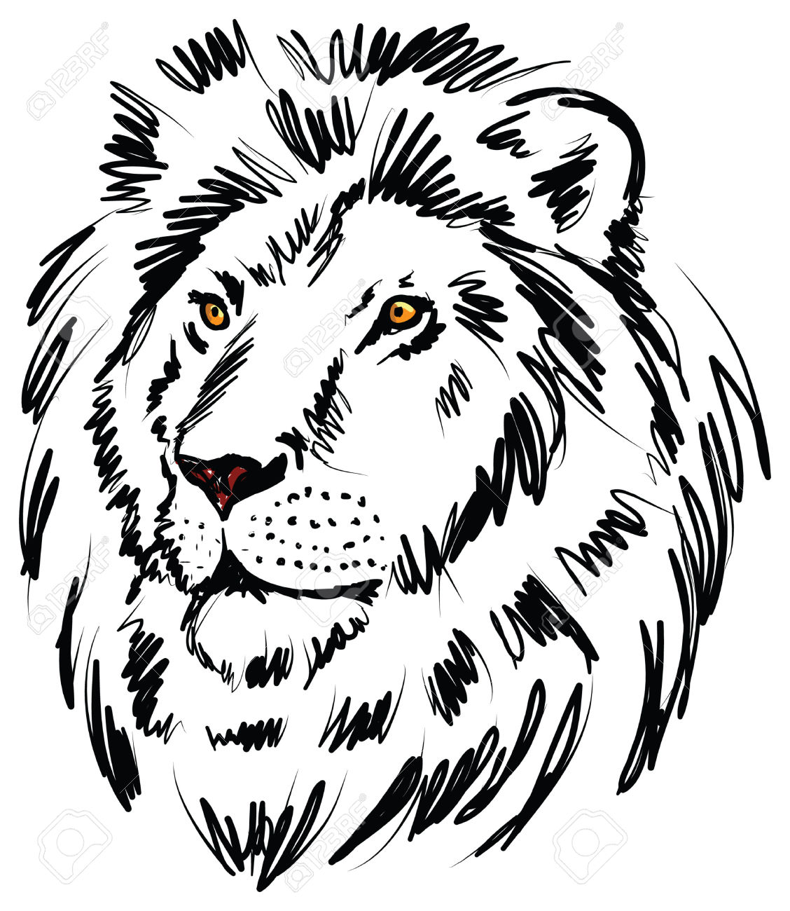 Lion Head Drawing At Getdrawings