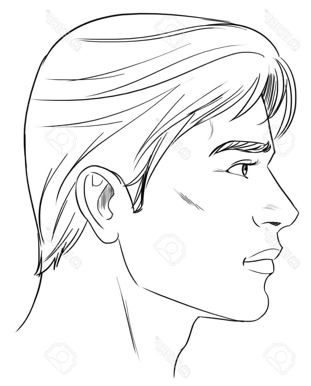 Male Drawing Outline At Getdrawings
