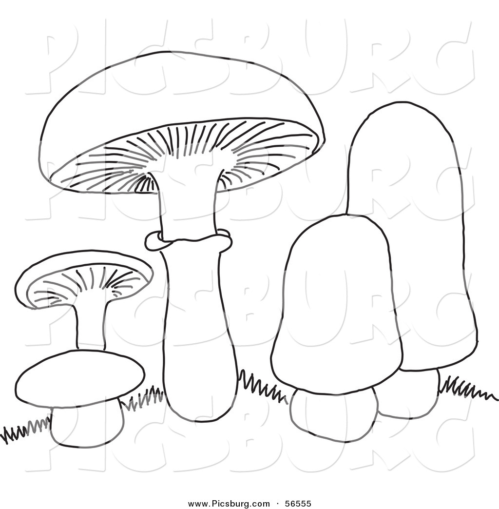 Fungi Sheet Coloring Pages
