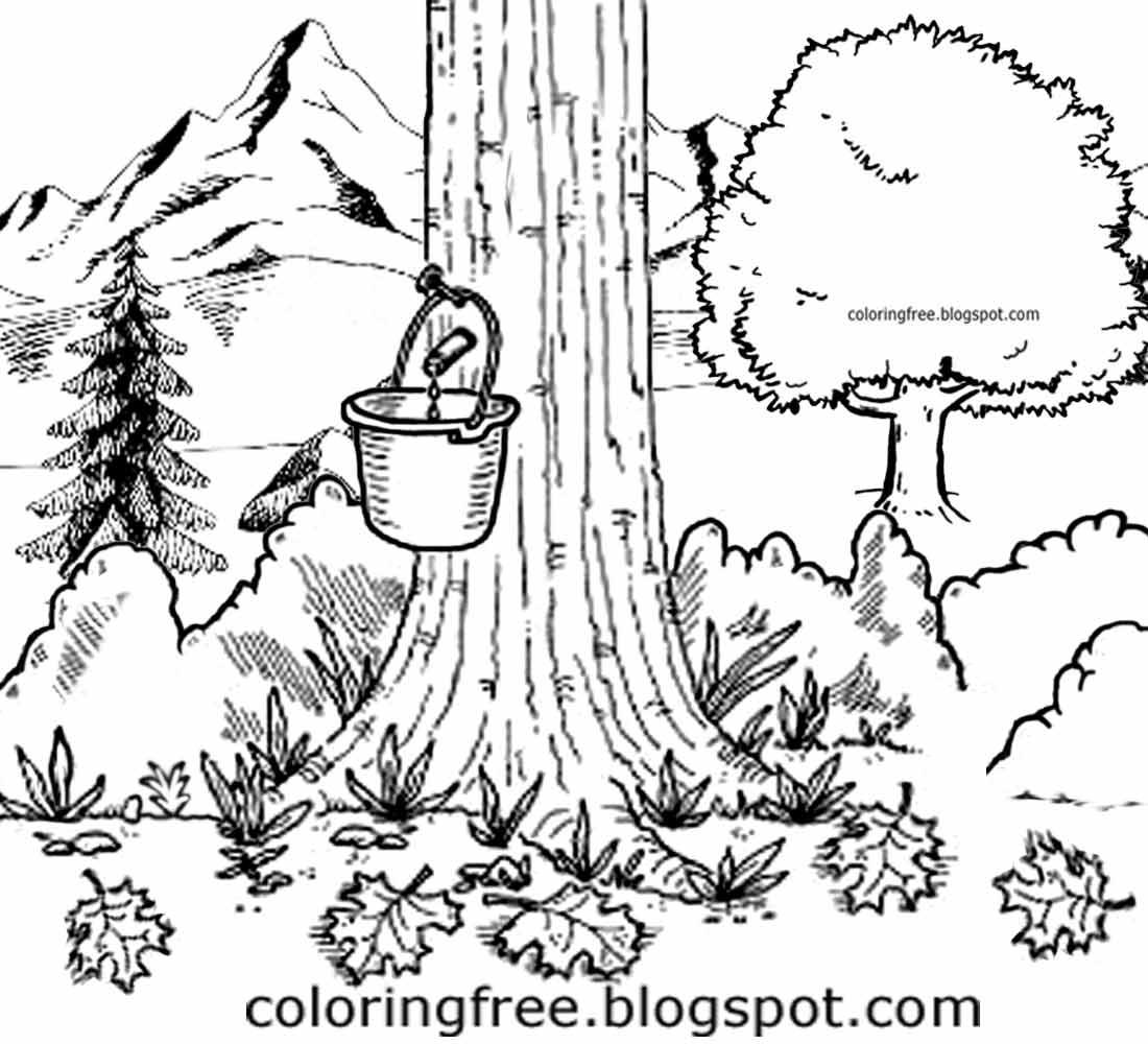 Natural Drawing At Getdrawings